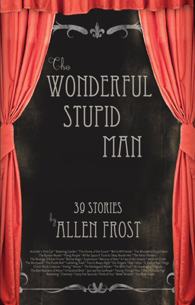 The Wonderful Stupid Man: Stories